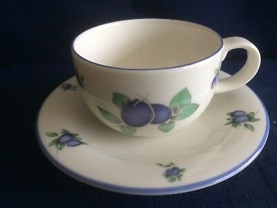 Royal Doulton Everyday Blueberry -TC1204 Tea Cup & Saucer (some Saucer Wear) B • 8.50£