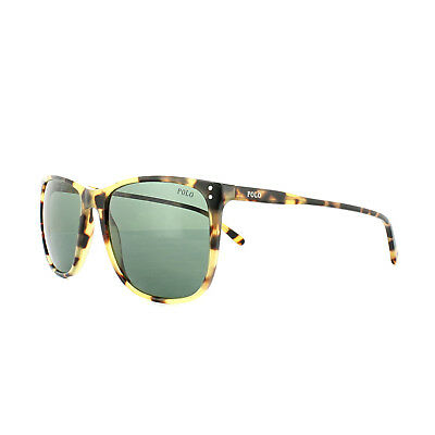 Polo Ralph Lauren Sunglasses PH4102 500471 Spotty Tortoise Green • 64£