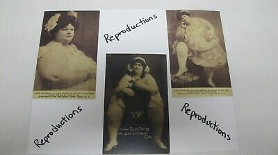 $ CDN17.13 • Buy 3-Reproduction Miss Cherrie Fat Woman Postcards~Circus Side Show~Coney Island