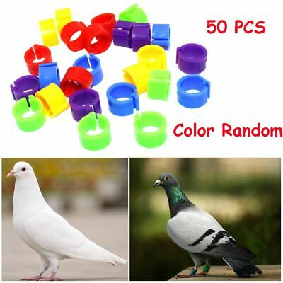Colorful Bird Duck Hen Chicken Poultry Leg Band Foot Rings Parrot Pigeon Clip • 3.77£