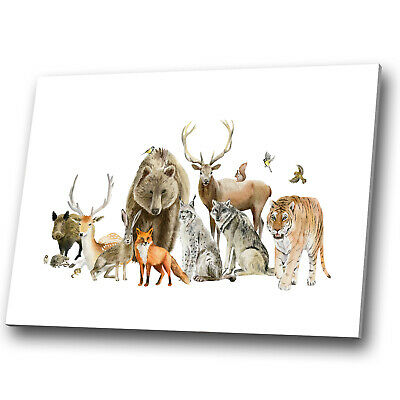 £34.99 • Buy Animal Canvas Print Framed Kitchen Wall Art Picture Animals Fox Bar Stag Deer