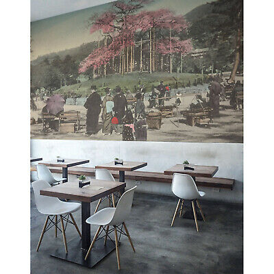 £44.95 • Buy Japanese Afternoon Wall Mural Art Wall Decor Peel And Stick Removable