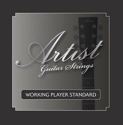 AU12 • Buy Artist ACST104712 12 String Acoustic Guitar Strings Bronze  - New