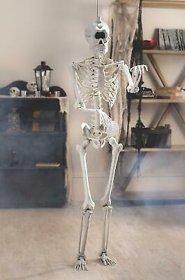 $58.99 • Buy Life-Size Hanging Skeleton One-Eyed Cyclops W Poseable Limbs Halloween Prop 5-ft