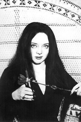 $ CDN33.08 • Buy The Addams Family Carolyn Jones In Chair 24x36 Poster(60x91cm)