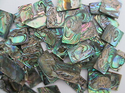 1oz DEFECT Green Paua Abalone Shell Blanks,.060 . Inlay Material. 17-20 Pieces • 14.53£