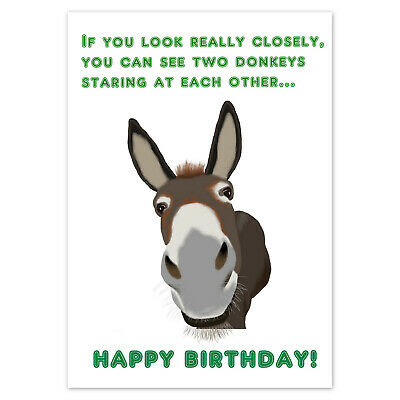 FUNNY BIRTHDAY CARD Rude Adult Humour For Men Women Male Female ~ Two Donkeys • 2.99£