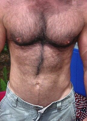 $ CDN4 • Buy Shirtless Male Hairy Chest Abs Masculine Dude Torso Close Up Shot PHOTO 4X6 N501