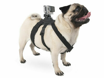 AU24.92 • Buy Action Camera Dog Harness Chest Fetch Mount. Osmo Pocket, Gopro, Apeman