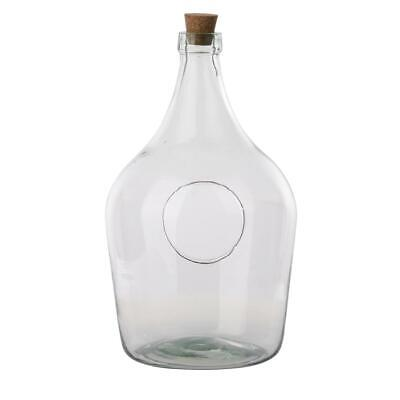 Clear Open Terrarium Bottle 5 Litre Recycled Glass Indoor Garden  • 20.48£