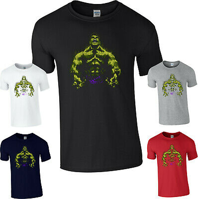 Hulk T-Shirt,The Incredible Hulk Avengers Superhero Marvel Comics Adult Kids Top • 8.99£