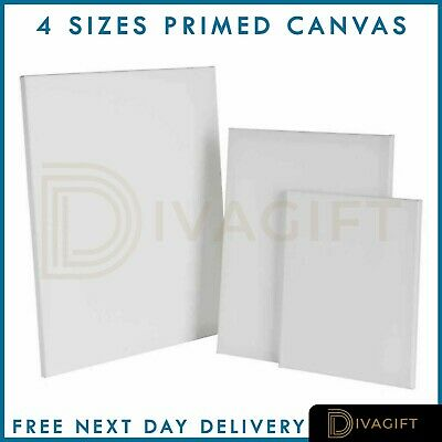 Blank Artist Canvas Art Board Plain Painting Stretched Framed White Large Small • 9.69£