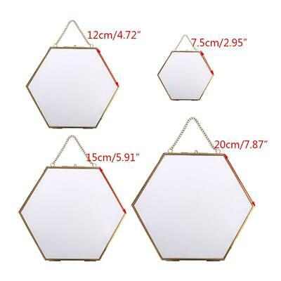 Hexagon Floating Hanging Photo Frame Metal Glass Portrait Picture Plant Specimen • 9.61£