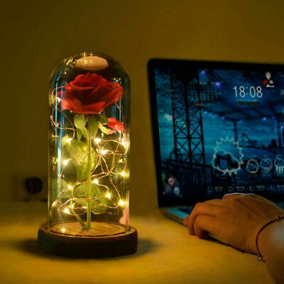 AU21.33 • Buy Beauty And The Beast Enchanted Red Rose Glass Dome LED Lamp Valentine's  Gifts