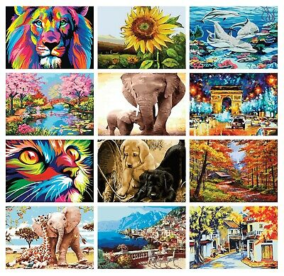 Paint By Numbers Adult Children Beginners Frameless DIY Oil Acrylic Painting Kit • 7.45£