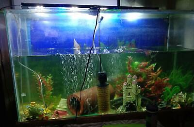 AU225 • Buy 4ft Fish Tank COMPLETE SETUP AND LOTS OF FISH BREEDING PAIR OF BRISTLENOSE ALSO