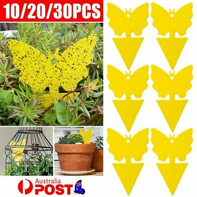 AU12.63 • Buy 30/50/100X Dual Sided Sticky Trap Insect Killer Whitefly Thrip Fruit Fly Gnat
