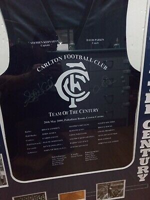AU688 • Buy Carlton Blues Team Of The Century Signed Jumper Guernsey Jersey