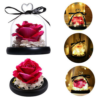 AU31.99 • Buy Enchanted Forever Rose Flower In Glass Lamp Dome Birthday Valentines Day Gift AU