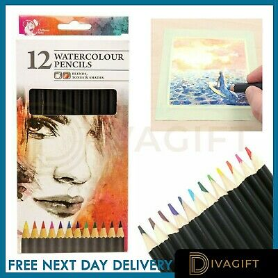 12 Watercolour Artist Pencils For Drawing Painting Sketching Art Water Colour UK • 2.99£