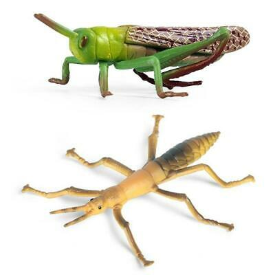 £2.78 • Buy Simulation Solid Static Animal Model Ornaments Realistic Locust/Stick Insect Toy