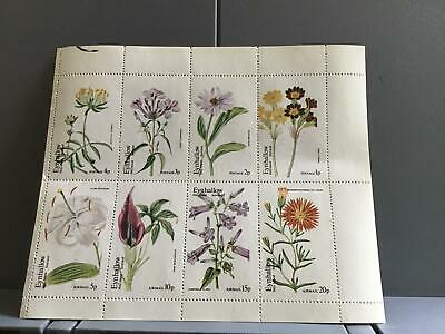 Scotland Eynhallow Holy Island Plants Flowers Phlox Clarkoides MNH Stamps R24019 • 6£