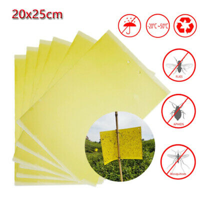 AU8.99 • Buy Bulk Yellow Sticky Insect Killer Whitefly Thrip Fruit Fly Gnat Leafminer Trap AU