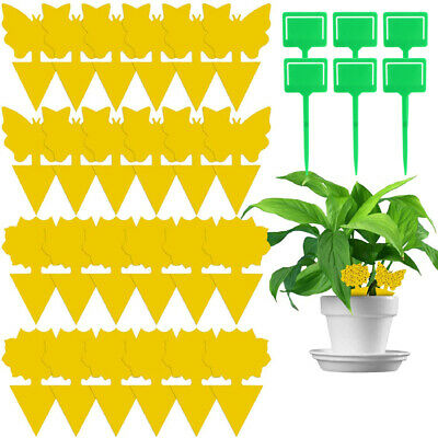 AU20.99 • Buy Yellow Sticky Trap Flying Insect Sticky Traps Gnat Catcher Dual-Sided (50pcs)