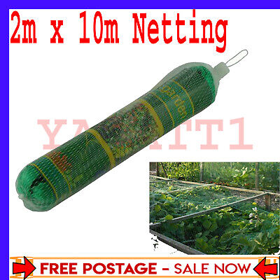 £5.19 • Buy 2m X 10m Garden Bean And Pea Netting Fruit Tree Butterfly Strawberry Netting X 1