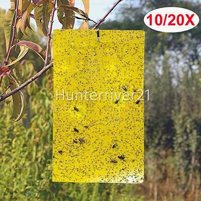 AU7.95 • Buy Yellow Sticky Insect Killer Whitefly Thrip Fruit Fly Gnat Leafminer Trap AUS