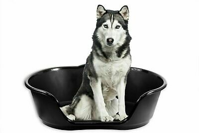 EXTRA LARGE XL Plastic Pet Bed Dog Bed Heavy Duty Waterproof Puppy Cat Cushion  • 17.50£