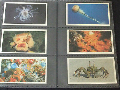 Grandee Cigar Cards THE LIVING OCEAN - Full Set Of 30 In Sleeves • 3.25£
