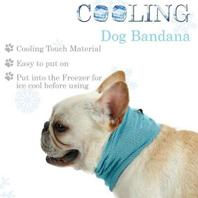 £3.99 • Buy Breathable Hypoallergenic Easy To Use Reusable Dog Cat Puppy Cool Bandana S,M,L