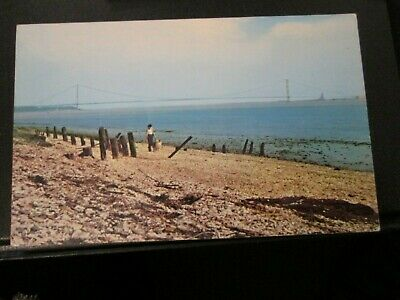 £1.49 • Buy Postcard Of Humber Bridge From The Hessle Foreshore (Unposted)