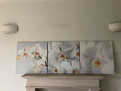 Ikea 3 X Orchid Flower Canvas Pictures • 14.50£