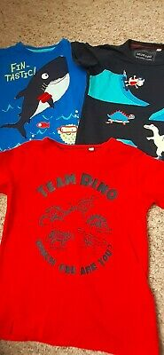 Boys T Shirt Bundle 2-3 Years Bluezoo • 1.50£