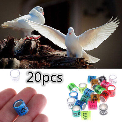 £2.06 • Buy 20PCS Bird Rings Leg Bands For Pigeon Parrot Finch Canary Hatch Poultry Rings