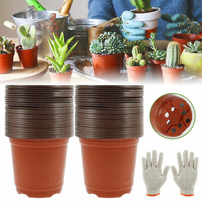 50pcs Plastic Plant Flower Pots Nursery Seedlings Container Seed Starting Pots • 6.49£