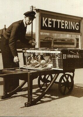 £0.99 • Buy Repro Basket Of Pigeons To Release Kettering Station Postcard