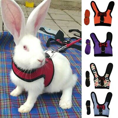 £3.58 • Buy Mesh Lead Vest Harness With Leash For Animal Pet Rabbit Bunnys Accessory Supplie