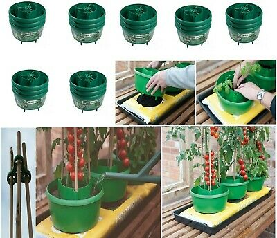 £11.99 • Buy Green  Plant Halo Tomatoes Grow Planter Garden Water Pot Tub Halos Cane Support