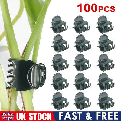 £5.22 • Buy 100pcs Plant Support Fix Clips Orchid Stem Vine Grow Support Flowers Tied Branch