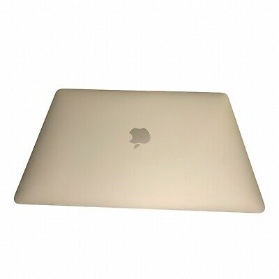 $489 • Buy 13  Macbook Air 2019 With Touch ID And Preinstall Mac OS. 128gb SSD And 8GB Ram