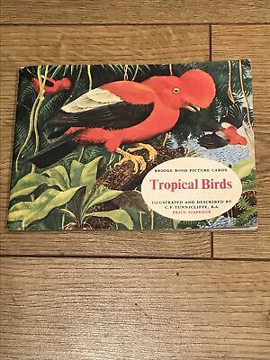 £1.70 • Buy Brooke Bond Tropical Birds Picture Card Album Price Sixpence.