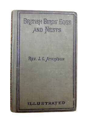 £15.99 • Buy 1886 British Birds Eggs And Nests Illustrated J C Atkinson W S Coleman