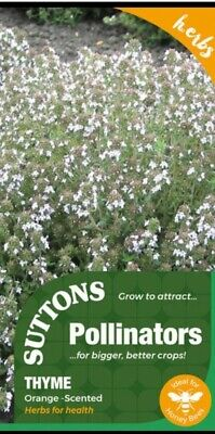 £1.99 • Buy Suttons Pollinators Thyme Orange Scented  100 Seeds