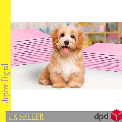 £9.99 • Buy Dog Pet Puppy Large Absorbent Training Pads Toilet Pee Wee Mat 60x45 60x90 Cm