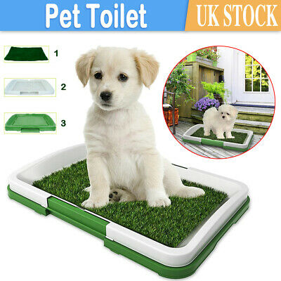 £10.59 • Buy PET Dog Toilet Mat Indoor Restroom Training Grass Potty Pad Loo Tray Large Puppy