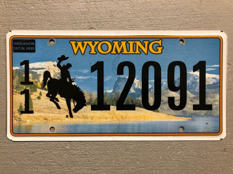 Wyoming License Plate Bucking Bronco Lake- Mountains 🏔 Random Letters/numbers • 6.99$