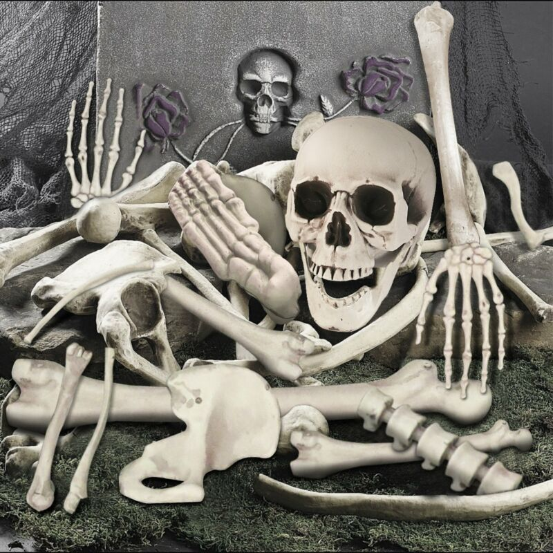 $23.86 • Buy Halloween Life Size Plastic Skeleton Bone Skull Posable Prop Outdoor Indoor 35PC